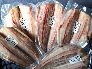 おいしい海鮮 食事 通販